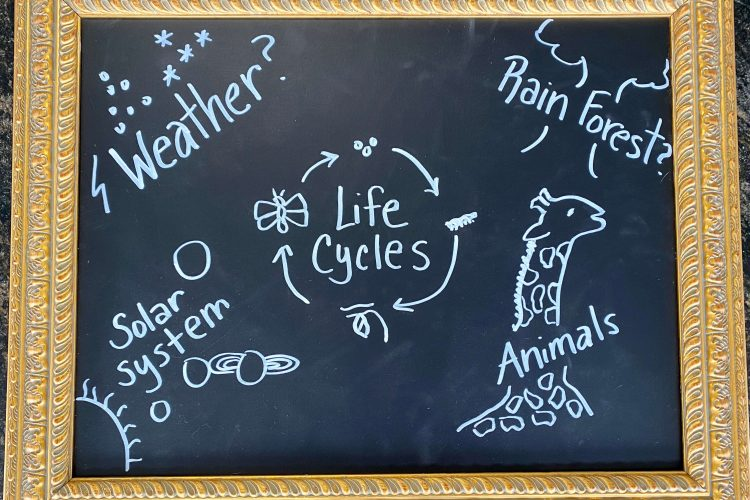 chalkboard with informative ideas written on it