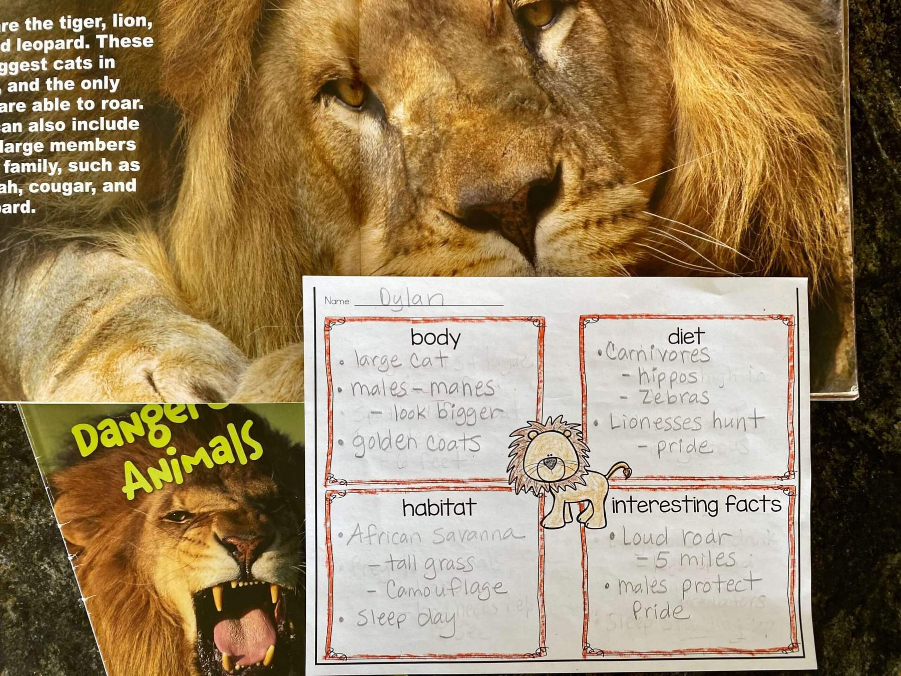 first grade lion notes